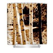 Aspens S Ll Shower Curtain