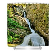 Aster Falls Shower Curtain