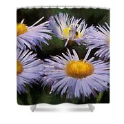 Asters Painterly Shower Curtain by Ernie Echols