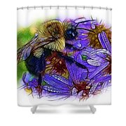 Asters With Dew And Bumblebee Shower Curtain