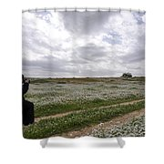 At Lachish Anemone Fields Shower Curtain