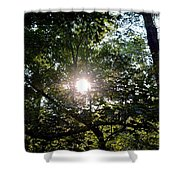 At Last Light Shower Curtain