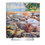 At Low Tide Shower Curtain
