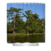 Atchafalaya Basin 41 Shower Curtain