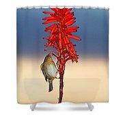 Atlantic Canary Shower Curtain