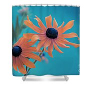 Attachement - S02cz Shower Curtain by Variance Collections