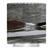 Attack Of The Canadian Geese Shower Curtain