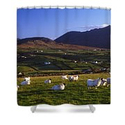 Aughrim Hill, Mourne Mountains, County Shower Curtain