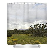 August Desert Shower Curtain