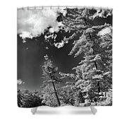 Ausable Chasm 1621 Shower Curtain