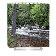 Ausable River 5252 Shower Curtain