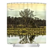 Auspicious Reflections Shower Curtain