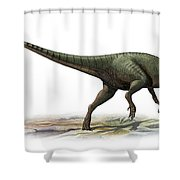 Australovenator Wintonensis Shower Curtain