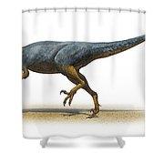 Austroraptor Cabazai, A Prehistoric Era Shower Curtain