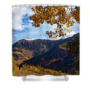 Autumn Above Aspen Shower Curtain
