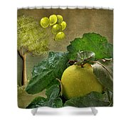 Autumn Apple Shower Curtain