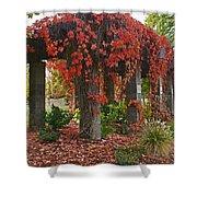 Autumn Arbor In Grants Pass Park Shower Curtain