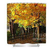 Autumn At Bayberry Cottage  Shower Curtain