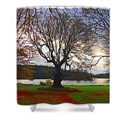 Autumn At British Camp Shower Curtain
