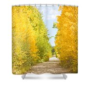Autumn Back County Road Shower Curtain