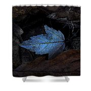Autumn Blue Shower Curtain
