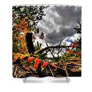 Autumn Breeze Through The Trees    Alt Shower Curtain