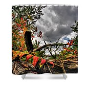 Autumn Breeze Through The Trees Shower Curtain