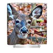 Autumn Buck Shower Curtain