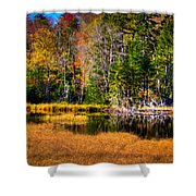 Adirondack Color 52 Shower Curtain