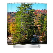 Adirondack Color P8 The White Bench Shower Curtain