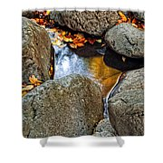 Autumn Colors Reflected In Pool Of Water Shower Curtain