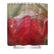 Autumn Dodwood Leaves Shower Curtain