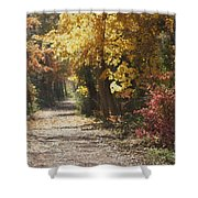 Autumn Dreams With Texture Shower Curtain