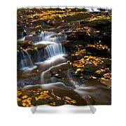 Autumn Falls - 72 Shower Curtain
