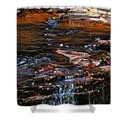Autumn Falls 2 Shower Curtain