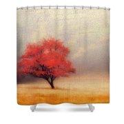 Autumn Fog Shower Curtain by Darren Fisher