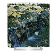 Autumn Foliage Floats Upon The Surface Shower Curtain