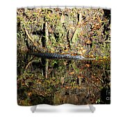 Autumn Gator Shower Curtain