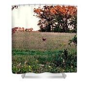 Autumn Hunt Shower Curtain