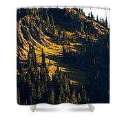 Autumn In A High Mountain Meadow Shower Curtain