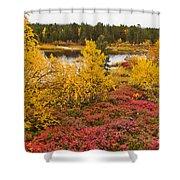 Autumn In Inari Shower Curtain