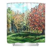 Autumn In My Backyard  Shower Curtain