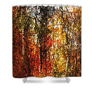 Autumn In The Woods Shower Curtain by David Lane