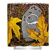 Autumn Ladybugs Shower Curtain