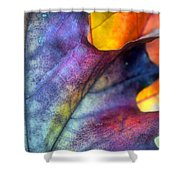 Autumn Leaf Abstract 2 Shower Curtain