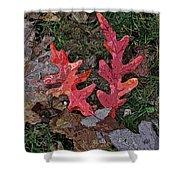 Autumn Leaf Art IIi Shower Curtain