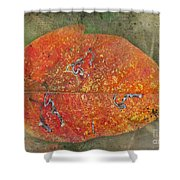 Autumn Leaf With Silver Trails Shower Curtain
