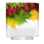 Autumn Leaves In Colour Shower Curtain