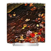 Autumn Leaves In River Shower Curtain