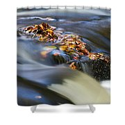 Autumn Leaves In Water Shower Curtain